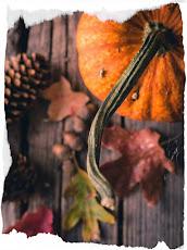 colori d'autunno!!!