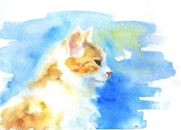 кот акварель