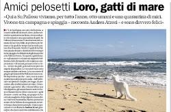 Dal Corriere del Ticino