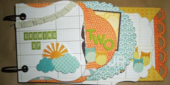 Growing Up Pre-Made 5x10 Tiered Chipboard Scrapbook Album - Months or Years - Boy Girl Unisex Orange Blue Green Brown Owls Baby Shower Gift