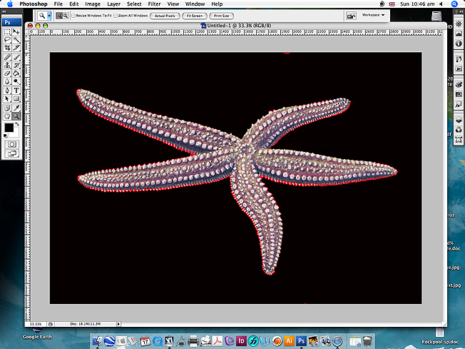 how to get illustrator to zoom in 100