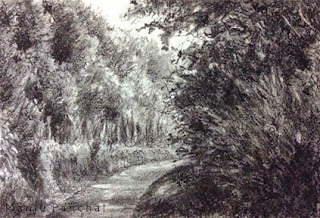 Charcoal sketching of Coorg landscape created on Canson C a grain paper by Manju Panchal