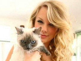 Taylor Swift Favorite Things