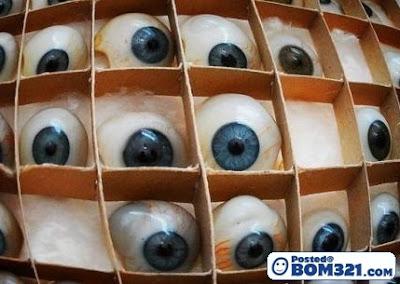 Proses Pembuatan Mata Palsu