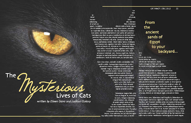 The Mysterious Lives of Cats Magazine Spread Eileen Gano