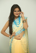 Nilofer sizzling saree photos-thumbnail-9