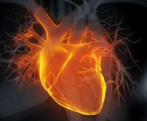 paranoid jantung