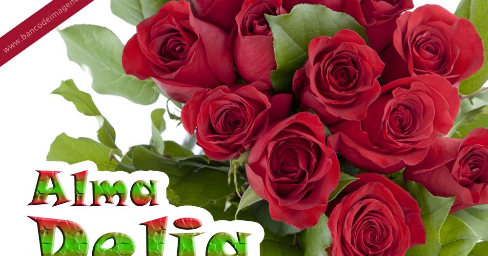 BANCO DE IMÁGENES: Rosas rojas con nombres de personas y