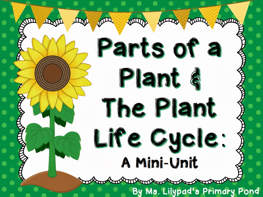 worksheet Life Cycle Of A Plant Worksheet plant worksheet abitlikethis life cycle for kids the cycle