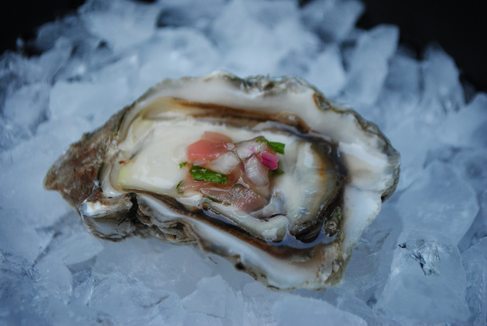 love oysters. I love raw oysters. Get over your fixation and start ...