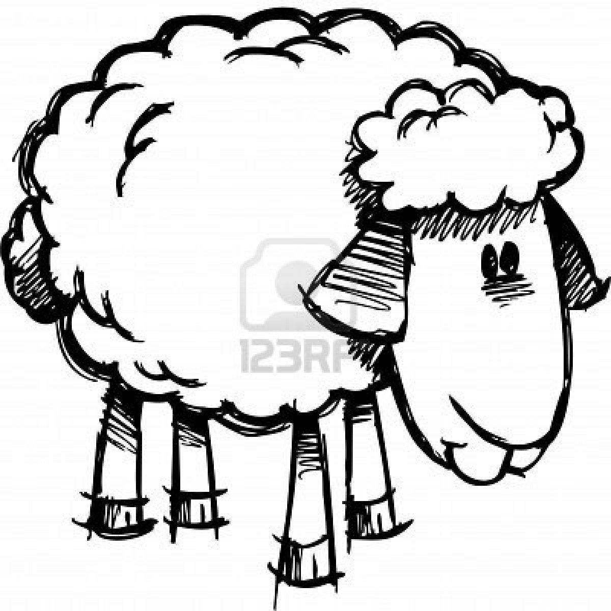 Desde mi rincón de religión: Colorear ovejas