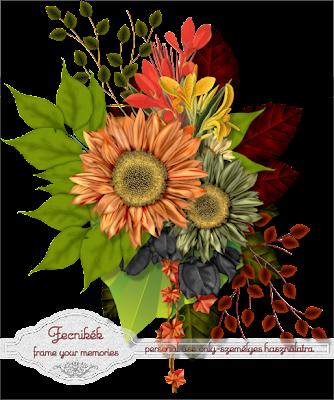 http://1.bp.blogspot.com/-bUcecGLvTeY/VEzUj9LwzSI/AAAAAAAAJqs/YikM9Allfoc/s400/flowercluster.fecnikek.prev.png