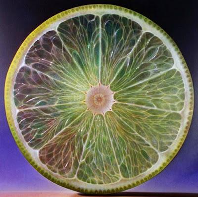 Limon En Rodaja Cuadro Bodegon