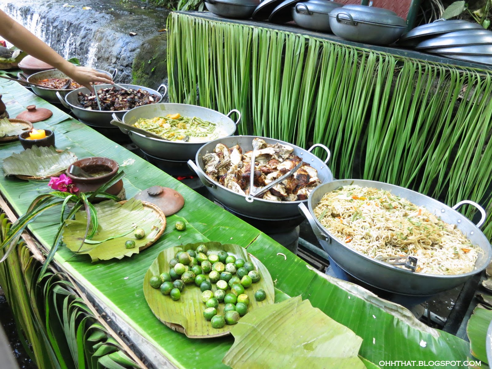 Ohhthat By Tin Buffet By The Waterfalls At Villa Escudero