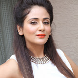 Parul Yadav Photos at South Scope Calendar 2014 Launch Photos 2528105%2529