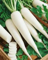 Manfaat Lobak Putih Untuk Mengobati Ambeien