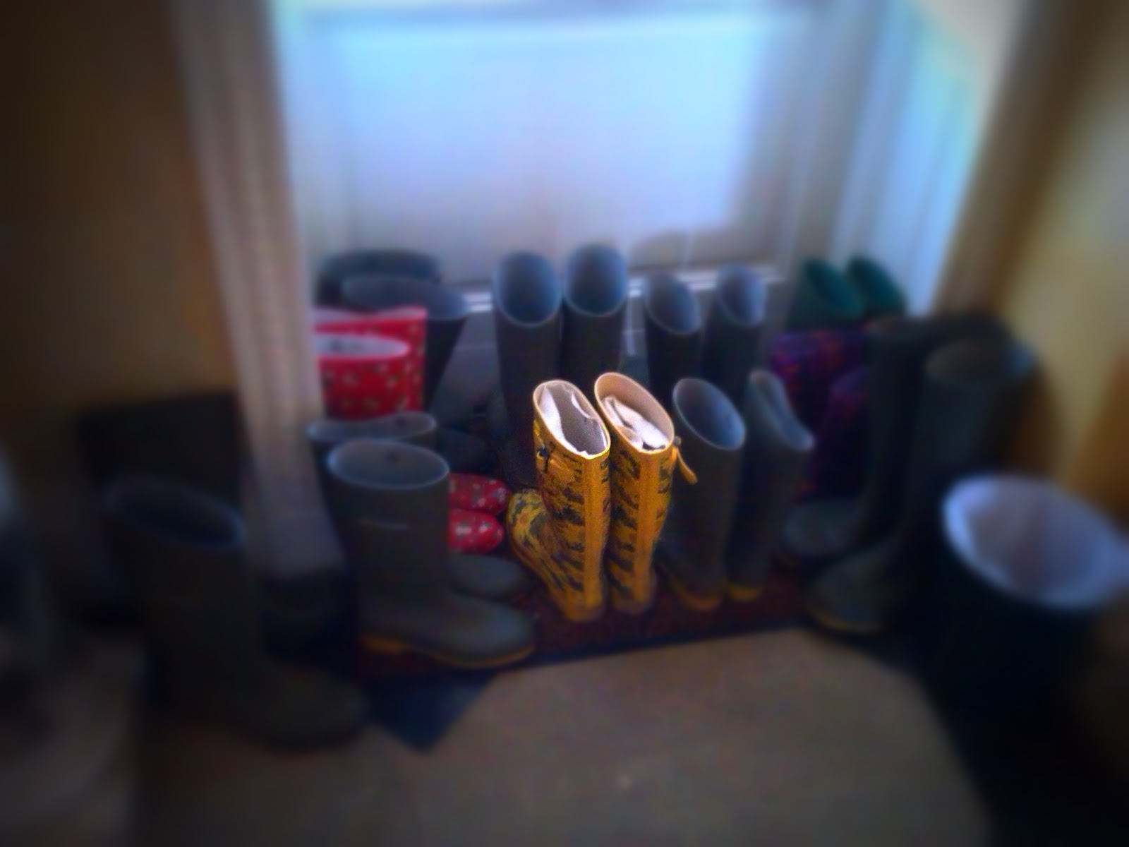Wellies for the guests