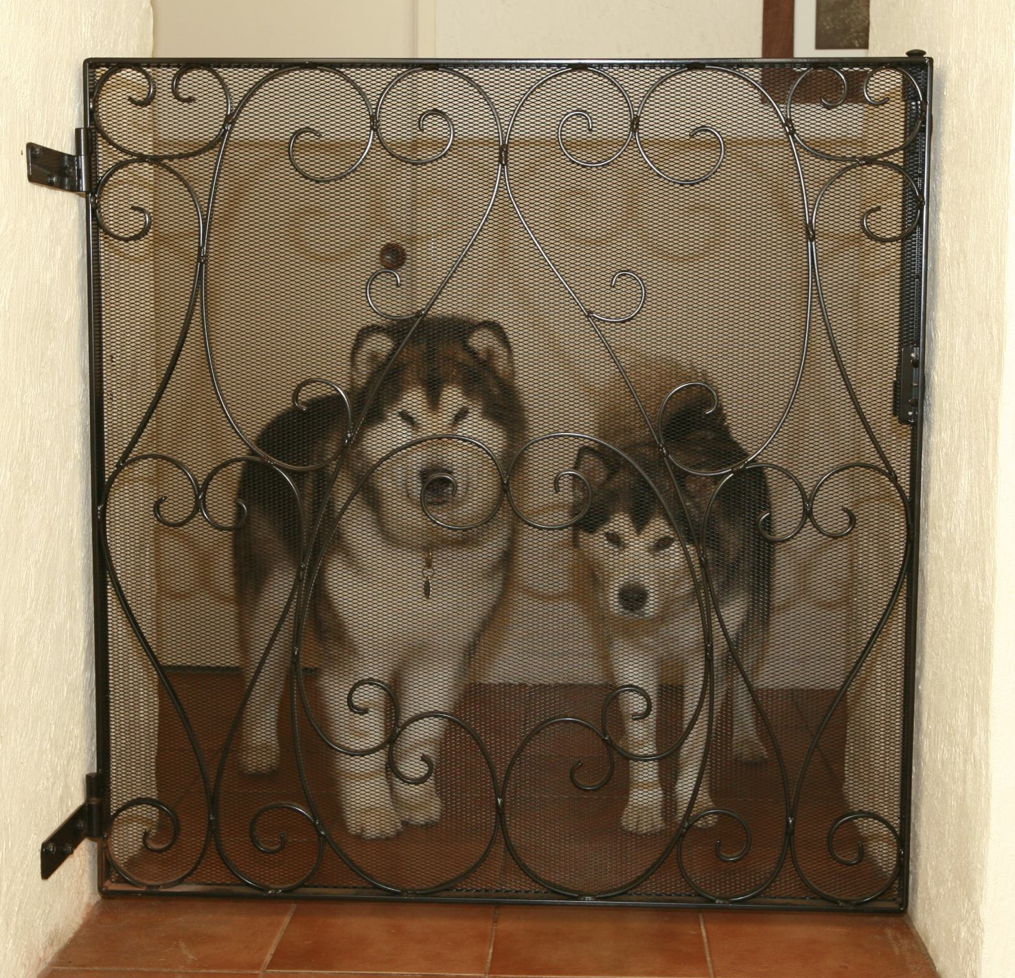 puppy gates indoor