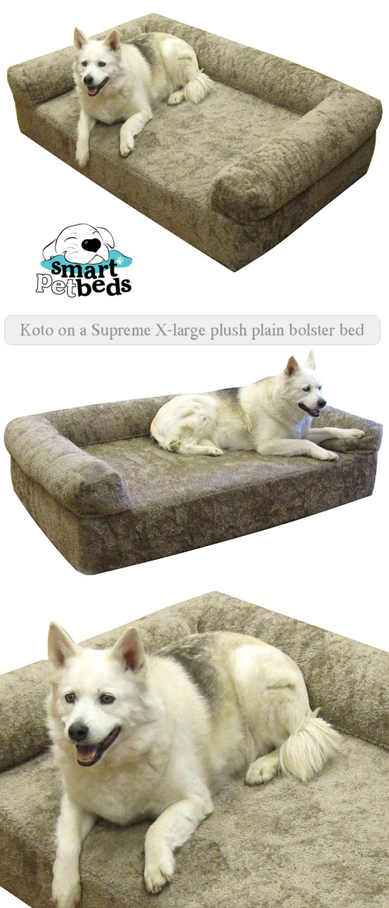 Koto on a supreme x-large plush plain bolster bed