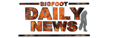 Bigfoot Daily News