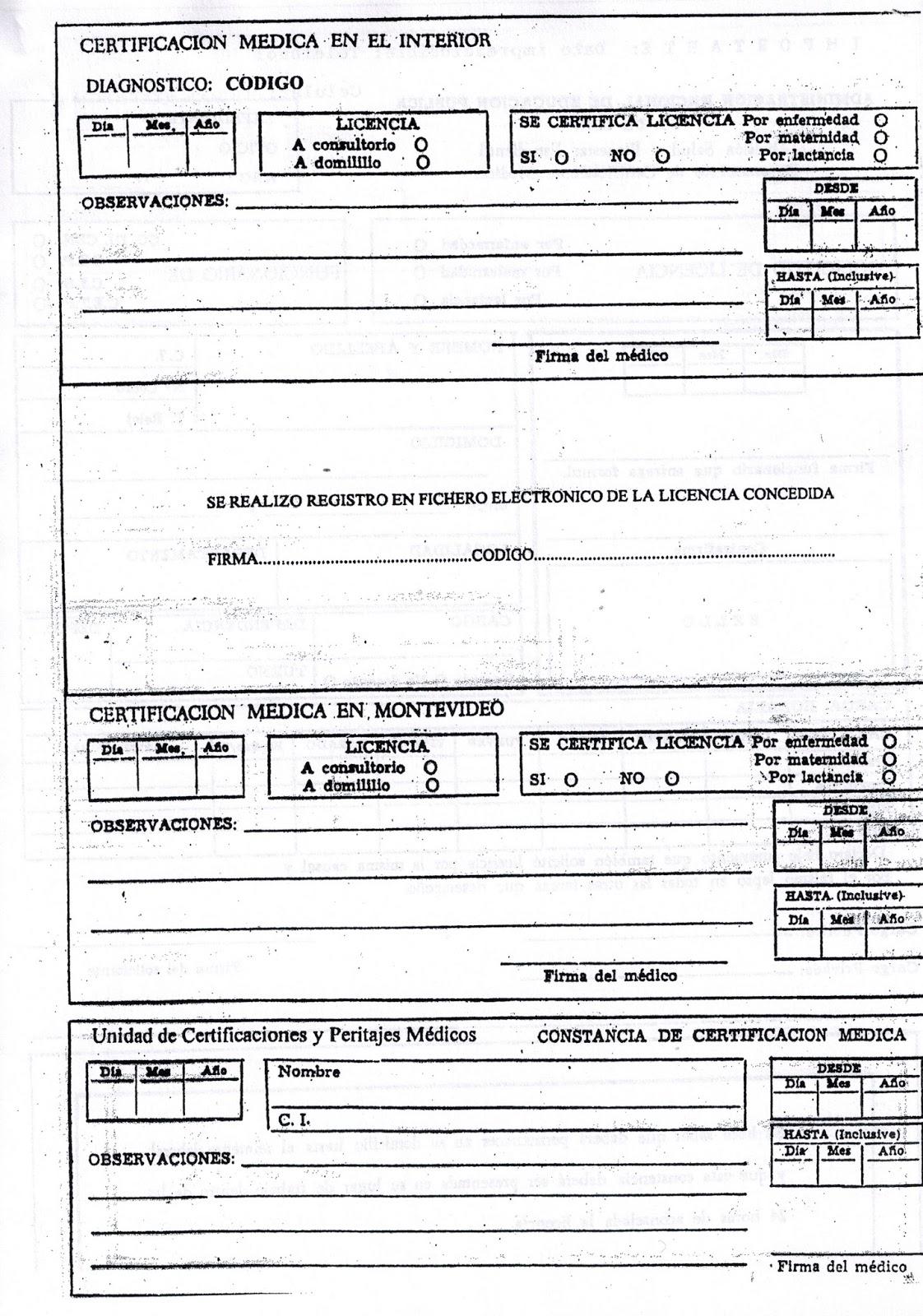 Inspecci n de maldonado administraci n licencias for Funcionarios docentes en el exterior