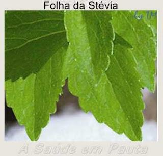 Foto das folhas da Stévia.