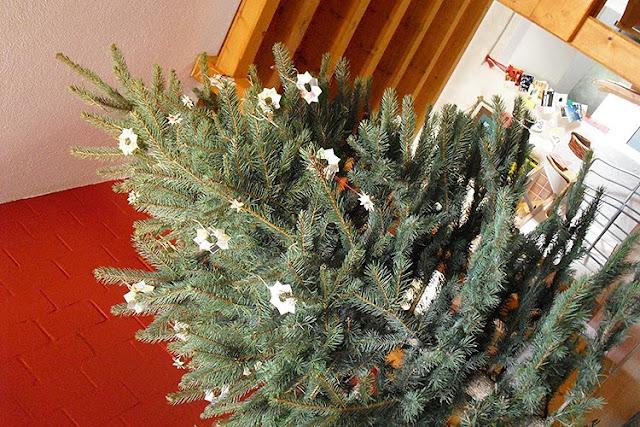 Christmas Tree by frauschoenert
