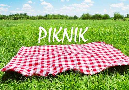 Cara Mencegah Serangga Mendekati Area Piknik