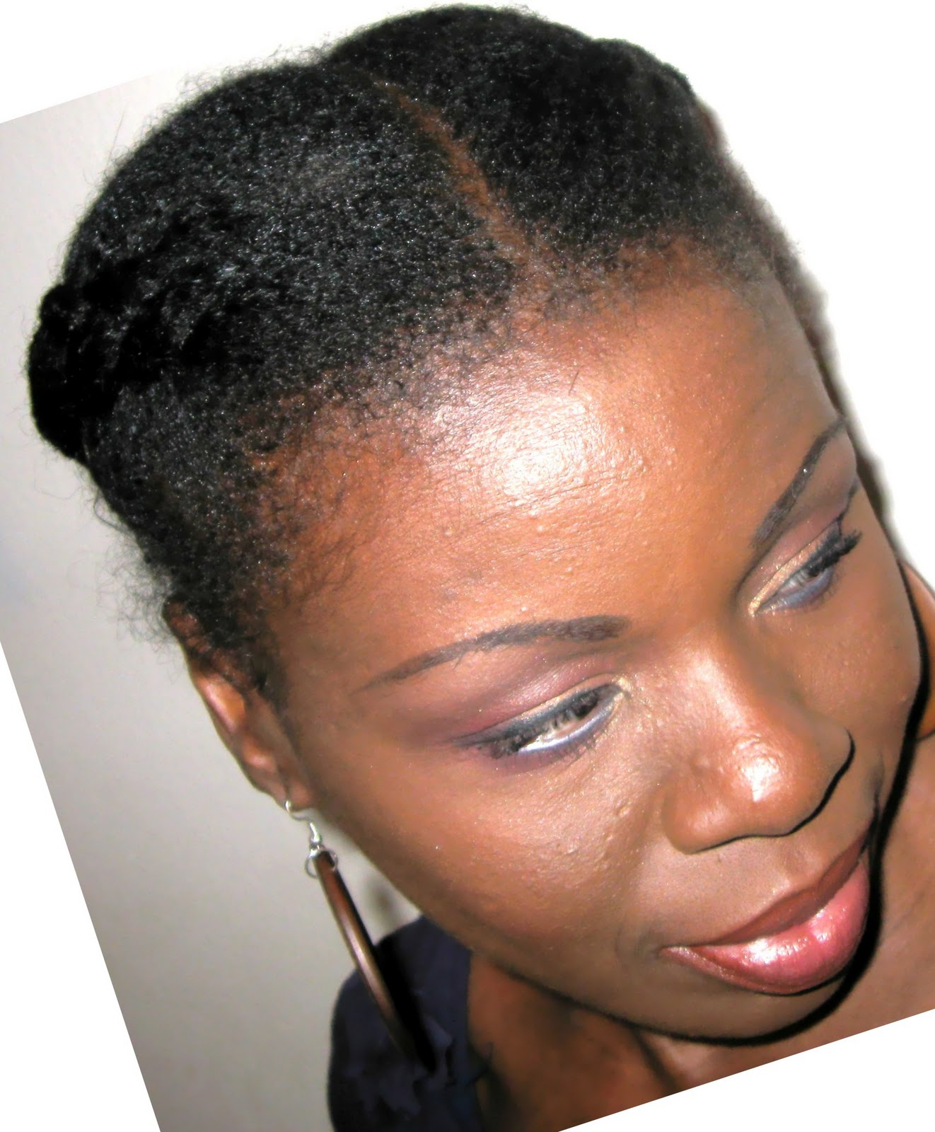 2 large braids with parting in the middle. | Natural Hair ...