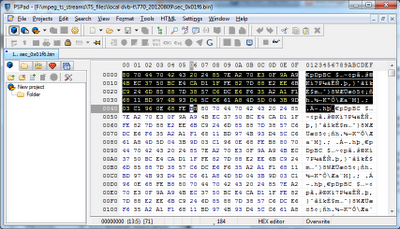ECM section in hex highlighted in hex editor