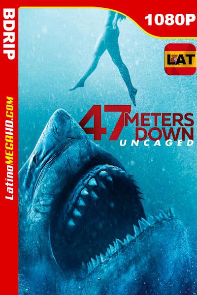 Terror a 47 metros: El segundo ataque (2019) Latino HD BDRip 1080P - 2019