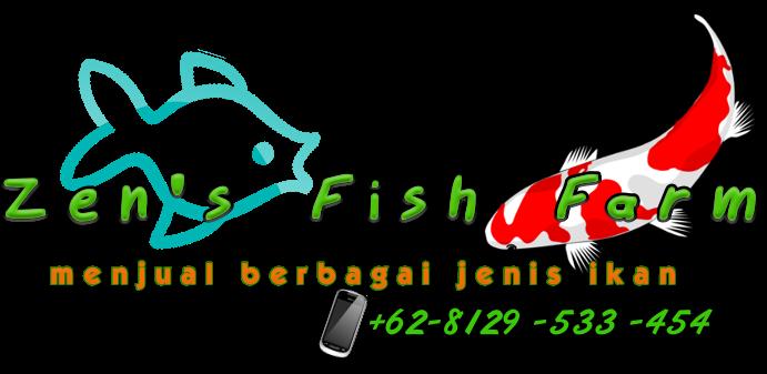 Zen's Fish Farm