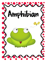 photo of Teaching With Style Amphibian Unit