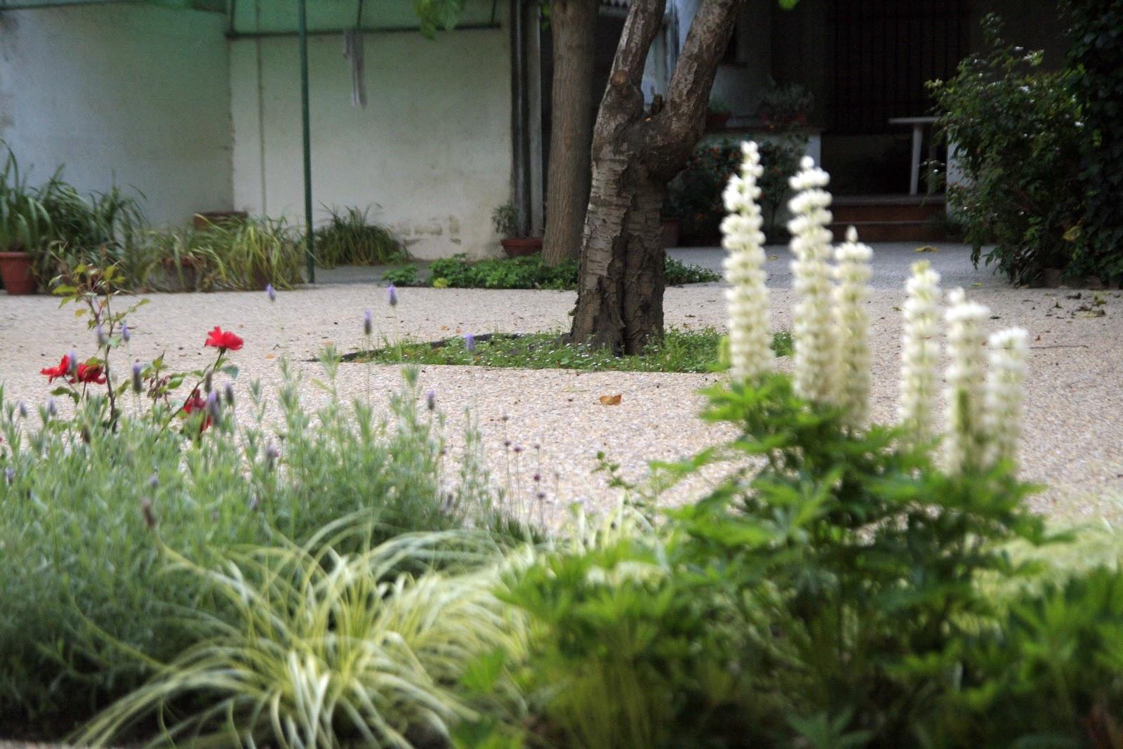 Jardinitis patio jard n mediterr neo - Disenador de jardines ...