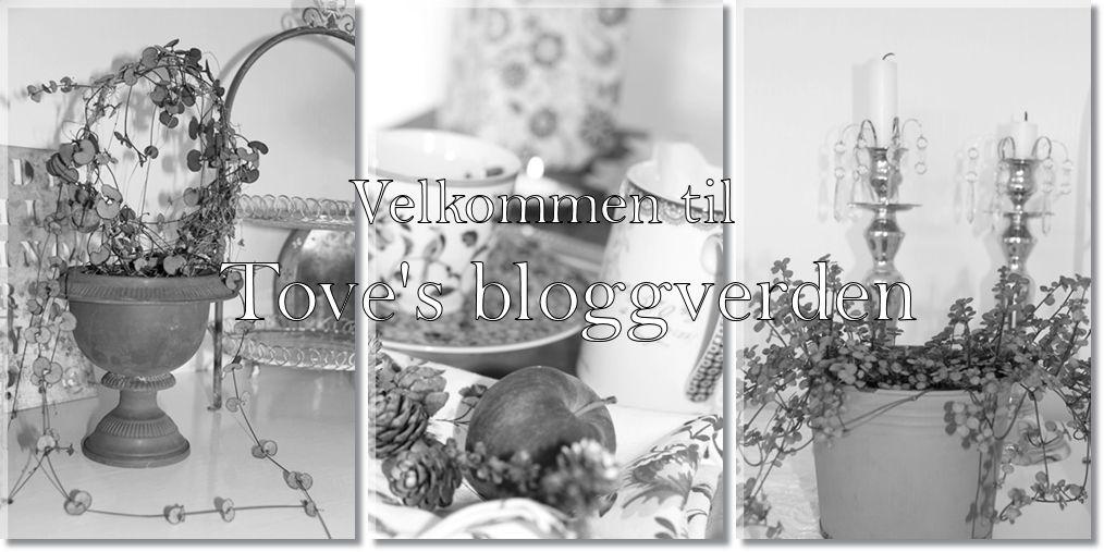Velkommen til Toves bloggverden