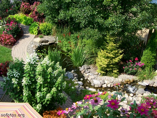flores e jardins fotos:Crédito das imagens: Reprodução