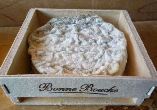 Bonne Bouche goat-milk cheese from Vermont Creamery