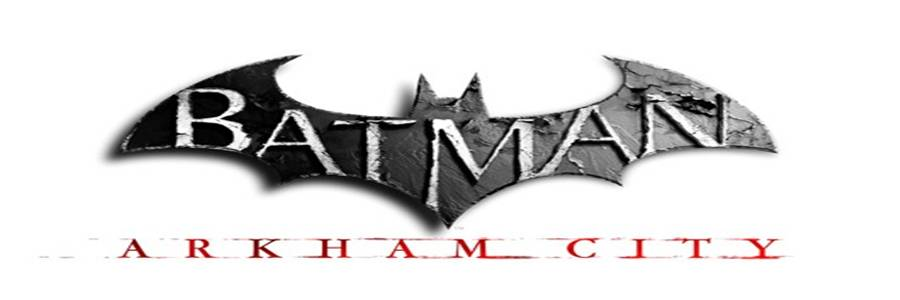 Batman Arkham City + Crack