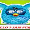 Kisah Sukses Bisnis lewat Boneka Furby