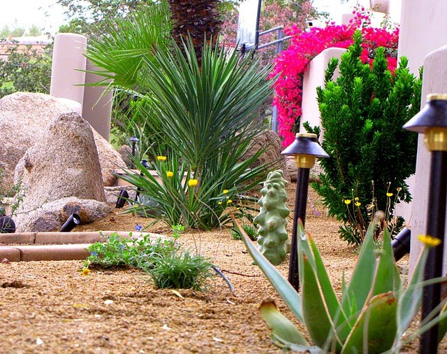 Desert landscape designs require less water landscape design for Water landscape design