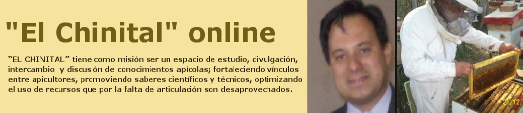 """El Chinital"" online"