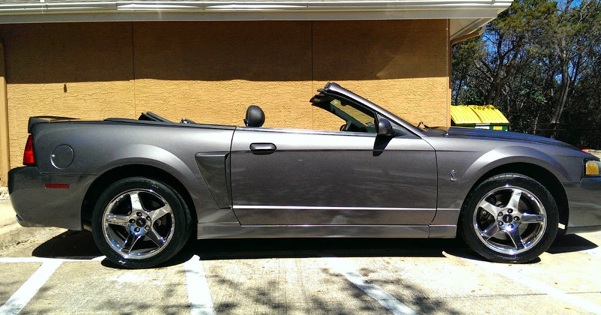 2003 ford mustang cobra convertible for sale american muscle cars. Black Bedroom Furniture Sets. Home Design Ideas