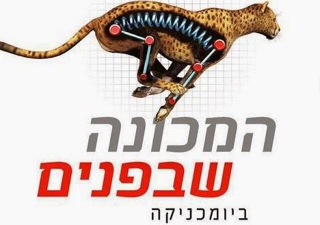 המכונה שבפנים - כרטיסים לתערוכה חדשה במוזיאון המדע בירושלים 2014