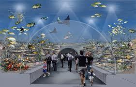 В Стамбуле открыли тематический аквариум.