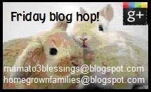 Friday Blog Hop