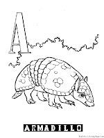 Animal Alphabet A For Armadillo