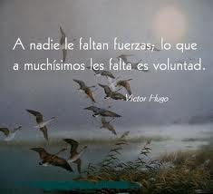 ¡Voluntad, implica Amar!