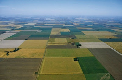 ideas de negocios agropecuarios