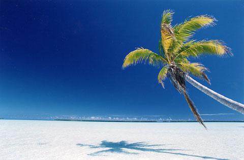 beach sands