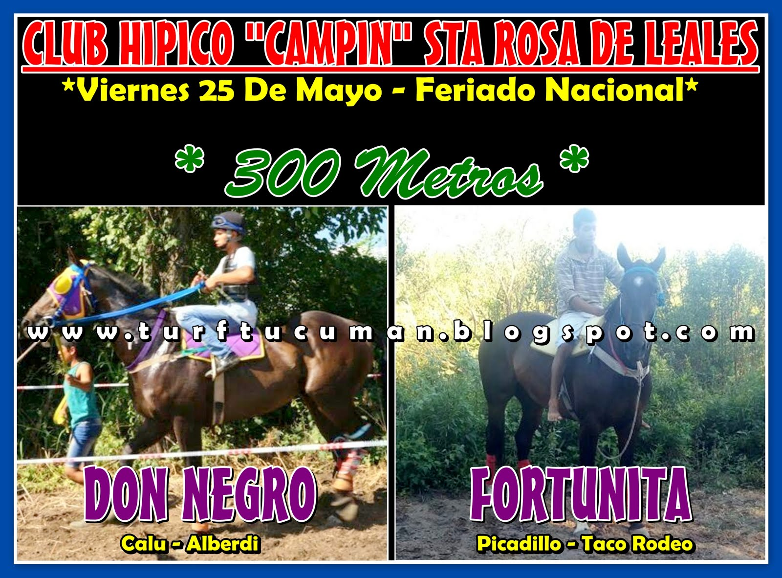 DON NEGRO VS FORTUNITA